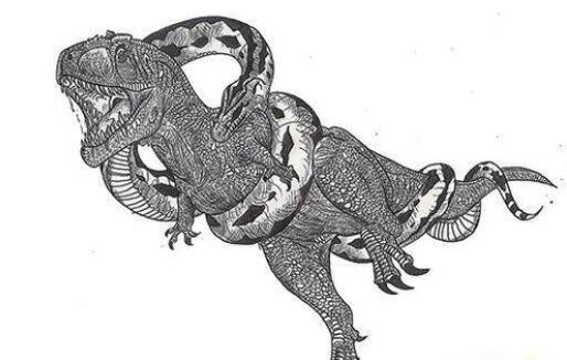 一亿年前巨蟒沃那比蛇:一口能吞噬恐龙 沃那比蛇灭绝原因插图
